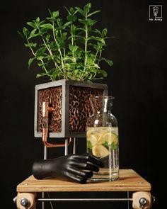 Self Watering Planter, Concrete Pots, Flower Pots, Flowers, Growing Plants, Kraut, Houseplants, Terrarium, Planters