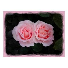 Dreamy Roses Poster #zazzle #gift #giftidea #poster #rose #roses #pink #nature #mothersday by www.zazzle.com/htgraphicdesigner*