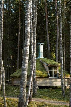 Urnatur eco-lodge, Holaved forest - Sweden