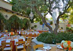 Green Parrot Cafe Santa Ana Ca