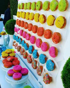 Donut Wall with the napkins behind the donuts already. Mini Donuts, 16th Birthday, Birthday Parties, Neon Birthday Cakes, Teen Parties, Teen Birthday, Neon Food, Donut Bar, Donut Shop