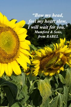 """""""Bow my head, feel my heart slow, I will wait for you."""" – Mumford & Sons, from BABEL – On New Jersey image by Florence McGinn -- Enjoy evocative quotes joined with original photography in a slideshow at http://www.examiner.com/slideshow/wanderlust-quotes"""