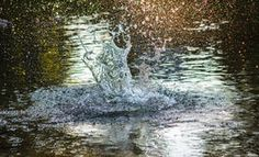 water splashes - Google Search