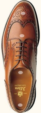 Standards of Quality Alden Shoes