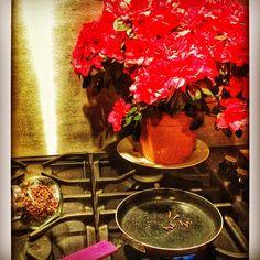 MAUVAISE ODEUR EN CUISINE Pour chasser une odeur de poisson ou de viande grillée dans votre cuisine, il suffit de faire griller quelques clos de girofles. Easy