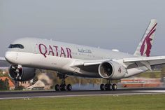 Qatar Doha, San Francisco, Vehicles, Phuket, Seychelles, Yorkie, Aircraft, Chicago, News