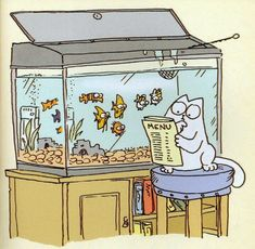 .Simon's Cat.... whats on the menu?