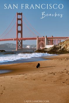 Yes, you can go to the beach in San Francisco, California. Here's where to find the best sand, swimming, walks and outdoor fun by the (chilly) water. California Camping, California Places To Visit, Ontario California, California Vacation, Cool Places To Visit, California Quotes, California Burrito, South California, California Mountains