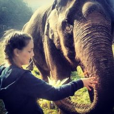 Volunteer at Thailand's Elephant Nature Park. #bucketlist