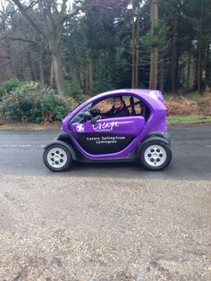 Twizzies round the New Forest-zoom zoom zoom