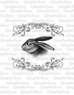 Lapin de Pâques dans le cadre Baroque lapin par GraphicSense