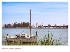 Barca (Deltebre) | por josé gracia gonzález
