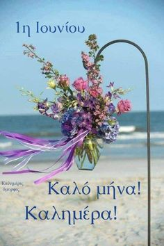 Cute Good Morning Pictures, Good Morning Images Flowers, New Month Greetings, Funny Wood Signs, Happy Day, Diy And Crafts, Glass Vase, Cards, Blog