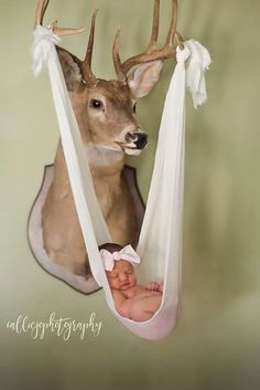 59 Ideas For Baby Girl Newborn Pictures Deer The Babys, Baby Print, Baby Poster, Shower Bebe, Baby Shower, Foto Baby, Newborn Pictures, Infant Photos, Newborn Pics