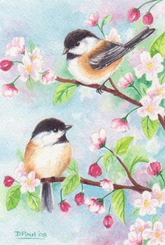Original watercolor painting bird chickadee cherry blossom flower spring 6 x 4 inches CaaT