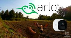 Reviewing the Arlo Go Security Cam as a Trailcam