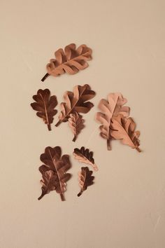 Copper Oak Confetti from @BHLDN