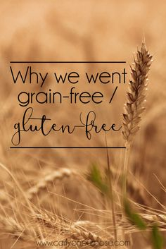 Are you thinking about going grain-free or gluten free? Sometimes you have no choice! Don't worry, it's not as scary as you think, and it might REALLY improve your health!