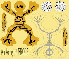 Army Frog fabric by blondfish on Spoonflower - custom fabric