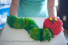 Pickles & Pie Photography: Very Hungry Caterpillar Birthday & Thomas the Train Birthday party Very Hungry Caterpillar Cake