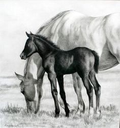 Karmel Timmons: Equestrian Art In Pencil: Originals Horse Pencil Drawing, Horse Drawings, Animal Drawings, Art Drawings, Pencil Drawings, Pencil Art, Wild Animals Pictures, Horse Pictures, Horse Artwork