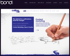 CALIBER INTERACTIVE Driving Force, Search Engine Optimization, Social Media Marketing, Campaign, Success, Words, Blog, Blogging, Horse