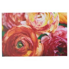 You'll love the Ranunculus Close Up Photographic Print at Joss & Main - With Great Deals on all products and Free Shipping on most stuff, even the big stuff.