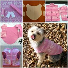 DIY Easy Dog Fleece Jacket