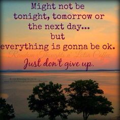 Just don't give up                                                       …