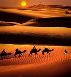 by Sambit Bandyopadhyay - Landscapes Deserts Desert Dream, Desert Life, Desert Sunset, New Nature Wallpaper, Sunset Wallpaper, Desert Places, Fun Deserts, Visit Egypt, Nature Pictures