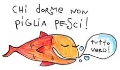 Learning italian - Italian proverb:  He who sleeps doesn't catch any fish.