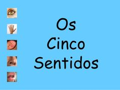 Os cinco sentidos_Paula_Zambujo by Albertina Pereira via slideshare