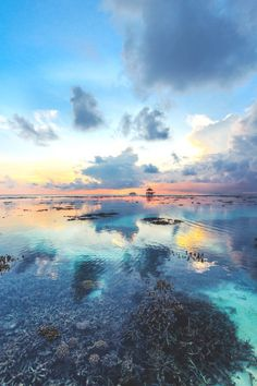 wavemotions:  Sunset in Maldives