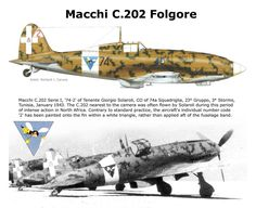 Macchi C.202 Folgore Military Helicopter, Military Jets, Military Aircraft, Italian Air Force, Italian Army, Aviation World, Aviation Art, Old Planes, War Thunder