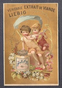 Deux Angelots Couronne DE Fleurs Bognard Chromo Liebig S 0106 Trade Card