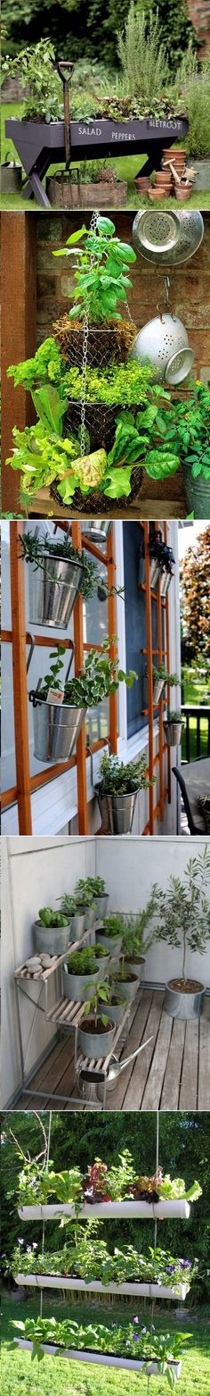 DIY Herb Gardens Ideas