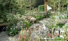 Vital Earth The Night Sky Garden / Grubby Little Faces | RHS Chelsea Flower Show 2014 – part one | http://www.grubbylittlefaces.com