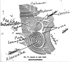 """or Maori Tattooing"""" is extensively annotated. The page reproduced above shows his changing system of moko nomenclature. Maori Face Tattoo, Ta Moko Tattoo, Face Tattoos, Ohm Tattoo, Maori Symbols, Maori Tribe, Maori Patterns, Polynesian Art, Sacred Geometry Tattoo"""