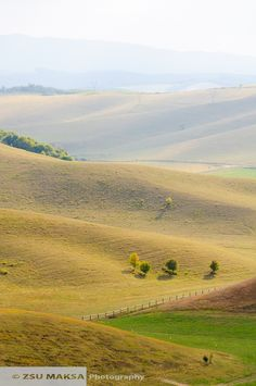 hills in hungary My Heritage, Homeland, Hungary, My Dream, Countries, Travel Inspiration, Things To Do, Landscapes, Country Roads
