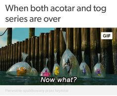 After I rage quit my job A Court Of Wings And Ruin, A Court Of Mist And Fury, Sara J Maas, Empire Of Storms, Sarah J Maas Books, Throne Of Glass Series, You Had One Job, Last Episode, Crescent City