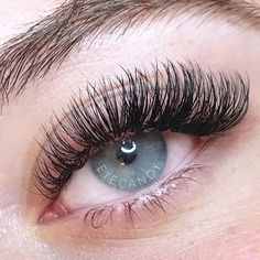 7e6b5b839d1 Black Lashes, Eyelashes, Eyebrows, Blue Eyes, Human Eye, Eye Candy, Lashes,  Eyebrowns, Eye Brows