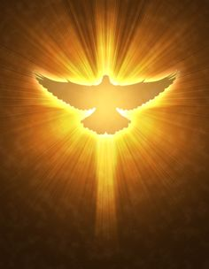 Holy Spirit Dove - Yahoo Image Search Results