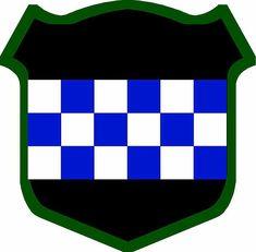99th RSC patch (367th MP Co.)