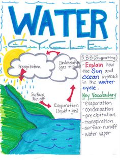 Students could do a brief group project involving creativity and art in science class about the water cycle--OK Science Lessons, Teaching Science, Science Notes, Student Teaching, Water Cycle Poster, Rain Cycle, Water Cycle Project, What Is Water, Science Anchor Charts