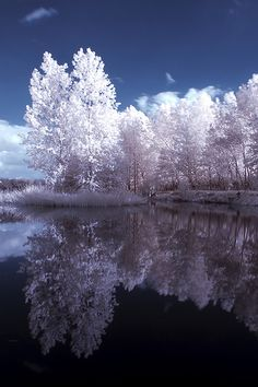 enhanced with infrared photography