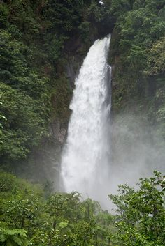 Trafalgar Falls ~ Commonwealth of Dominica