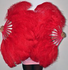 """A pair of Red single layer Burlesque Ostrich Feather Fans 24""""x41"""""""