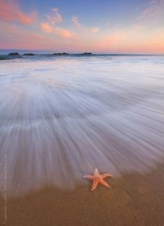 Seastar Sunrise | Flickr - Photo Sharing!