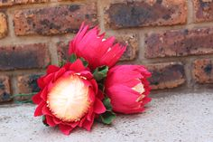 The Protea flower is part of South Africa's heritage. Just look how magnificent they look in a bunch! Protea Flower, Crepe Paper Flowers, Centerpieces, Diy, Crafty, Rose, Plants, Handmade, Ideas
