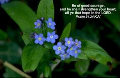 Be of good courage, and he shall strengthen your heart, all ye that hope in the LORD. Psalm 31:24